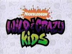 Wild & Crazy Kids TV Show