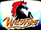 Wildfire (1986) TV Show