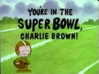 You're in the Super Bowl, Charlie Brown! TV Show