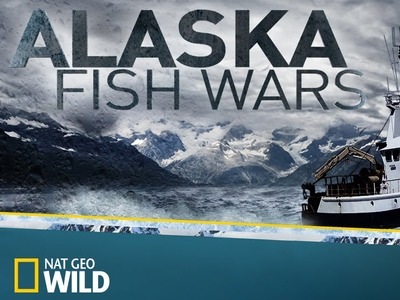 Alaska Fish Wars tv show photo