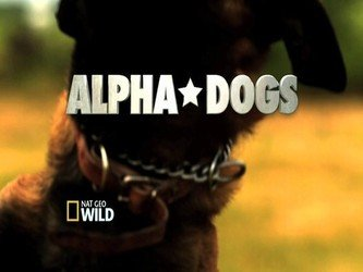Alpha Dogs tv show photo