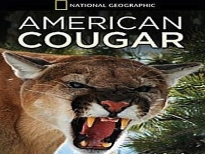 American Cougar: Revealed tv show photo