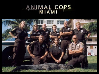 Animal Cops: Miami tv show photo
