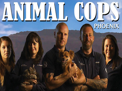Animal Cops: Phoenix tv show photo