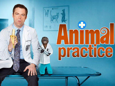 Animal Practice tv show photo
