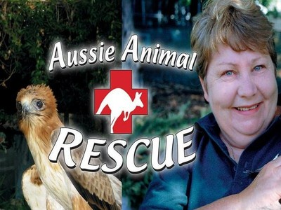Aussie Animal Rescue (AU)