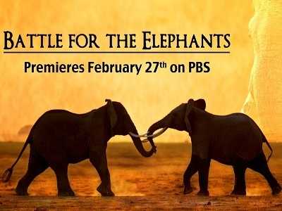 Battle for the Elephants tv show photo