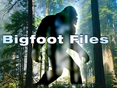 Bigfoot Files (UK)