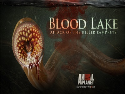 Blood Lake: Attack of the Killer Lampreys tv show photo