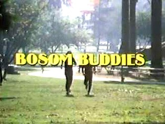 Bosom Buddies tv show photo