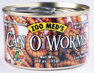 Can Of Worms (AU)