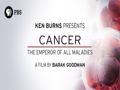 Cancer: The Emperor of All Maladies tv show photo