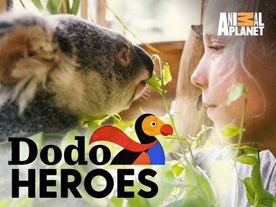 Dodo Heroes tv show photo