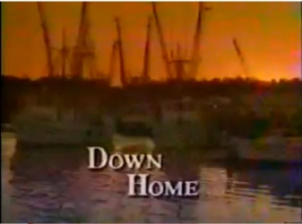 Down Home tv show photo