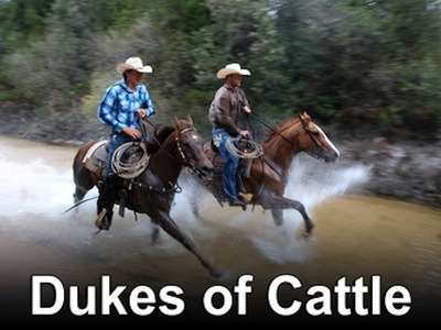 Dukes of Cattle tv show photo