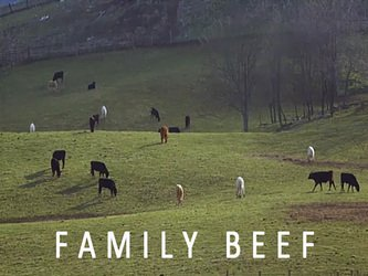 Family Beef