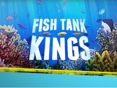 Fishtank Kings tv show photo