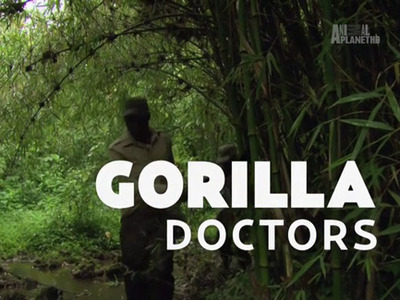 Gorilla Doctors (UK)