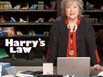 Harry's Law tv show photo