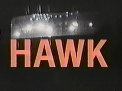 Hawk tv show photo