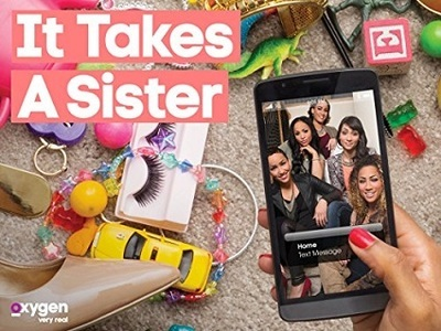 It Takes a Sister tv show photo