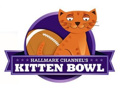 Kitten Bowl tv show photo