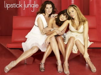 Lipstick Jungle tv show photo