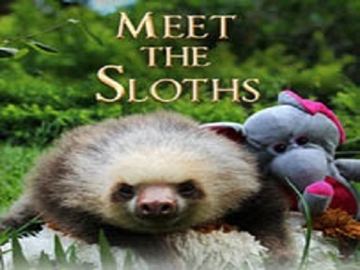 Meet the Sloths (UK) tv show photo