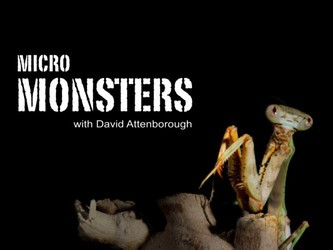 Micro Monsters with David Attenborough (UK) tv show photo
