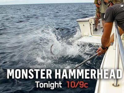 Monster Hammerhead (UK)