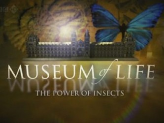 Museum of Life (UK) tv show photo