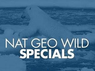 National Geographic Wild Special