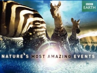 Nature's Most Amazing Events (UK) tv show photo