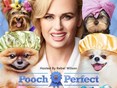 Pooch Perfect (US) tv show photo
