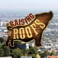 Raising the Roofs tv show photo