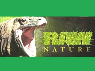 Raw Nature tv show photo
