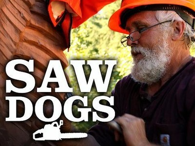 Saw Dogs tv show photo