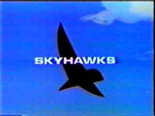 Skyhawks tv show photo