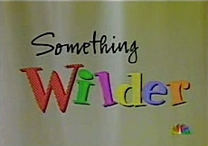 Something Wilder tv show photo