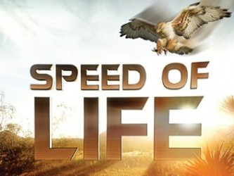 Speed of Life tv show photo