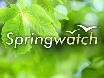Springwatch (UK)
