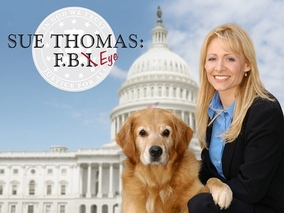 Sue Thomas: F.B.Eye tv show photo