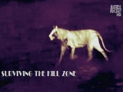 Surviving the Kill Zone