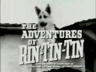 The Adventures of Rin Tin Tin tv show photo