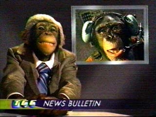 The Chimp Channel tv show photo