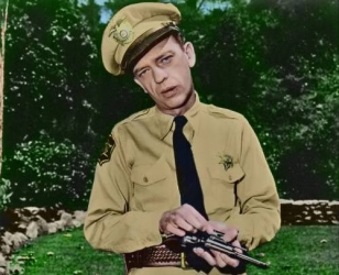 The Don Knotts Show tv show photo