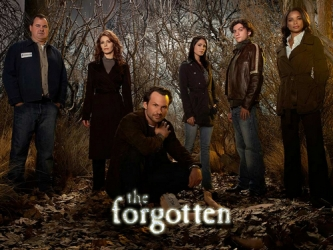 The Forgotten tv show photo