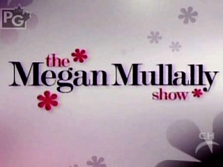 The Megan Mullally Show tv show photo
