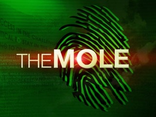 The Mole tv show photo