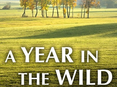 A Year in the Wild (UK) tv show photo